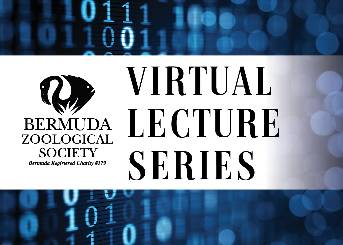 Virtual Lecture Square.png